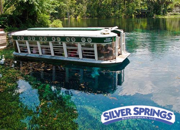 Silver-springs-pict